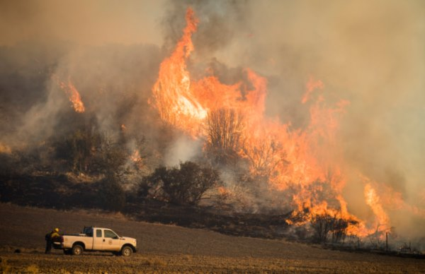 В Австралии тушат огромные лесные пожары